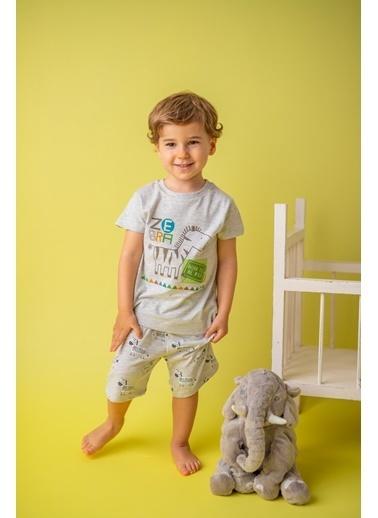 Zeyland Karmelanj Zebra şortlu Pijama Takımı (1-4yaş) Karmelanj Zebra şortlu Pijama Takımı (1-4yaş) Renkli